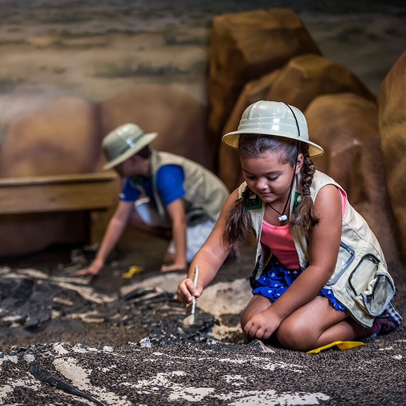 Children dig for fossils in safari gear.