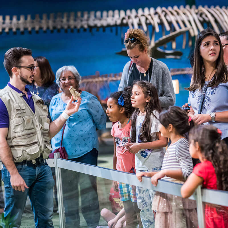 An educator shows a fossil to a group of visitors.