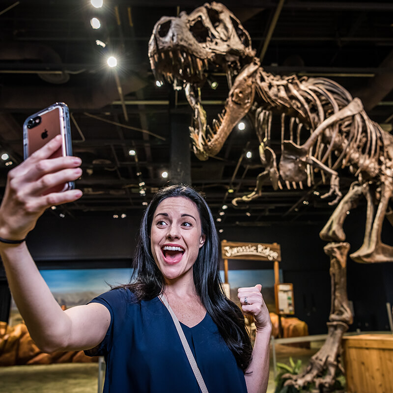 A woman taking a photo on her cell phone in front of the T. Rex skeleton.