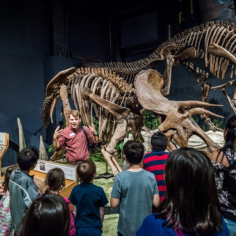 An educator speaks to a group of visitors about a dinosaur skeleton.