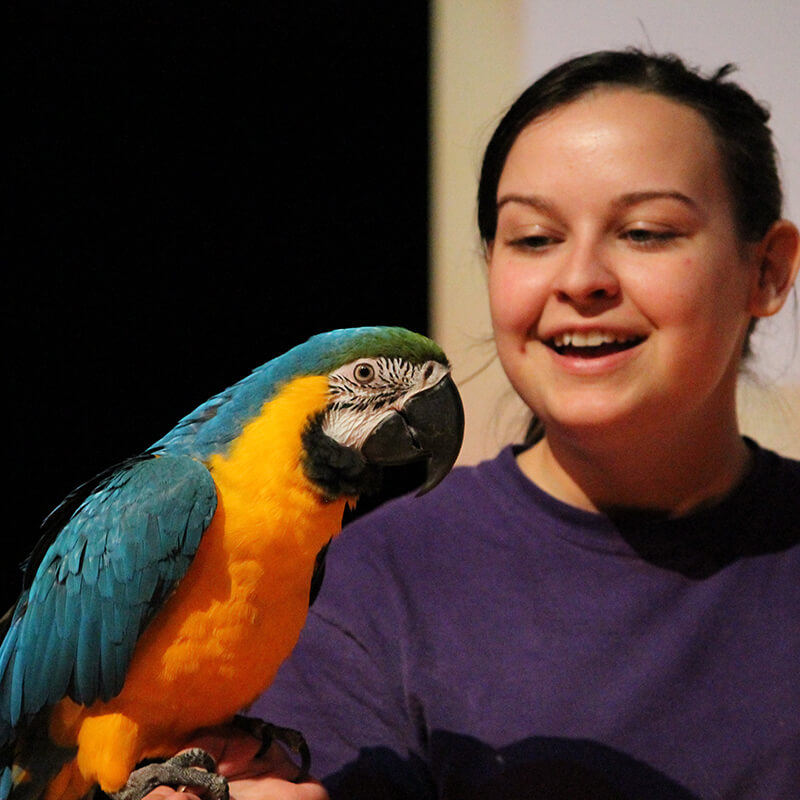 A presenter holds a parrot in the Animal Inspired live show.