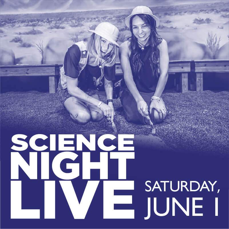 Science Night Live Flyer
