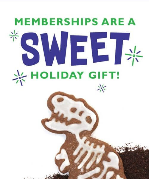Memberships are a sweet holiday gift