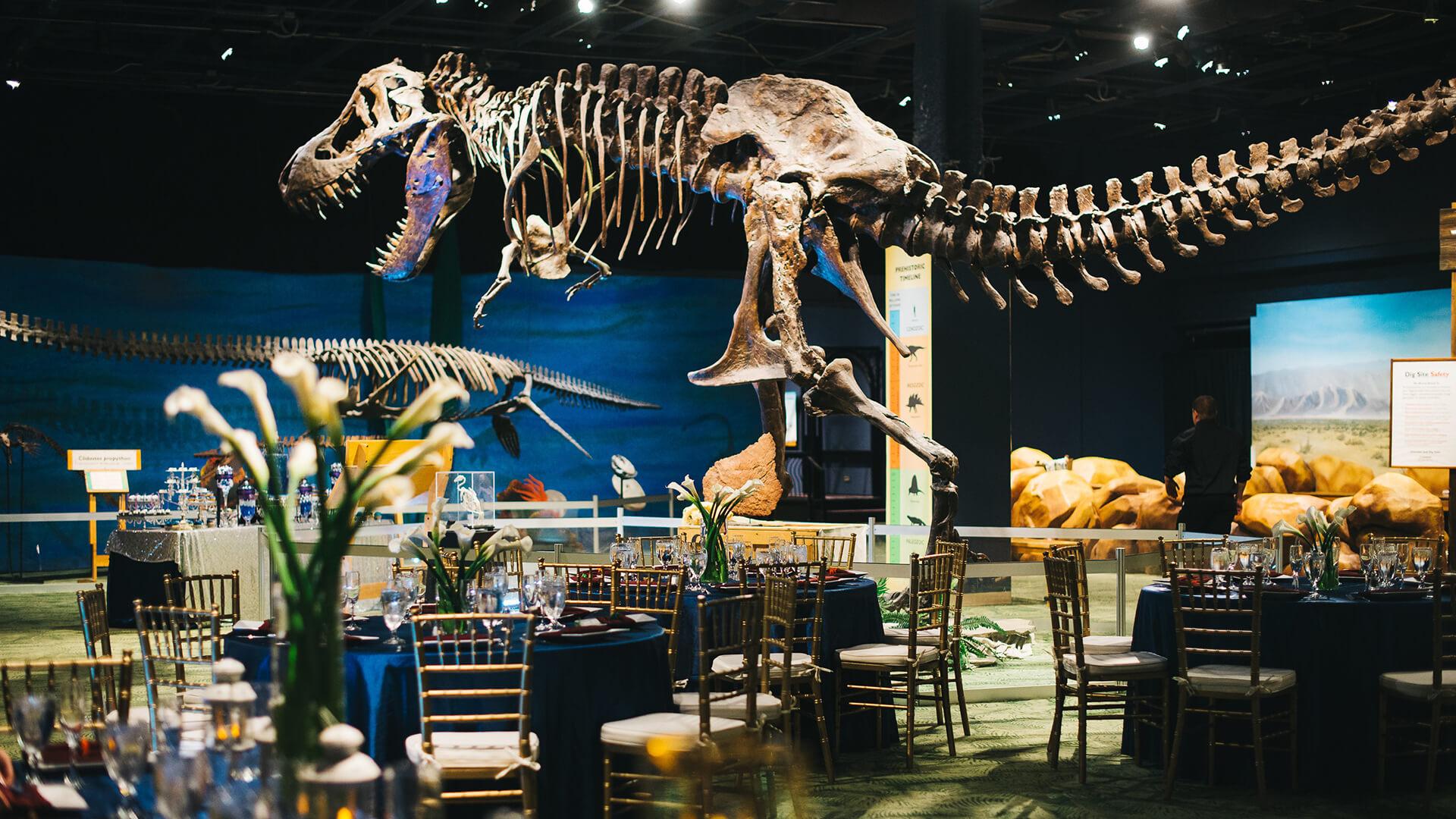 Wedding-setup-in-DinoDigs-exhibit-hall