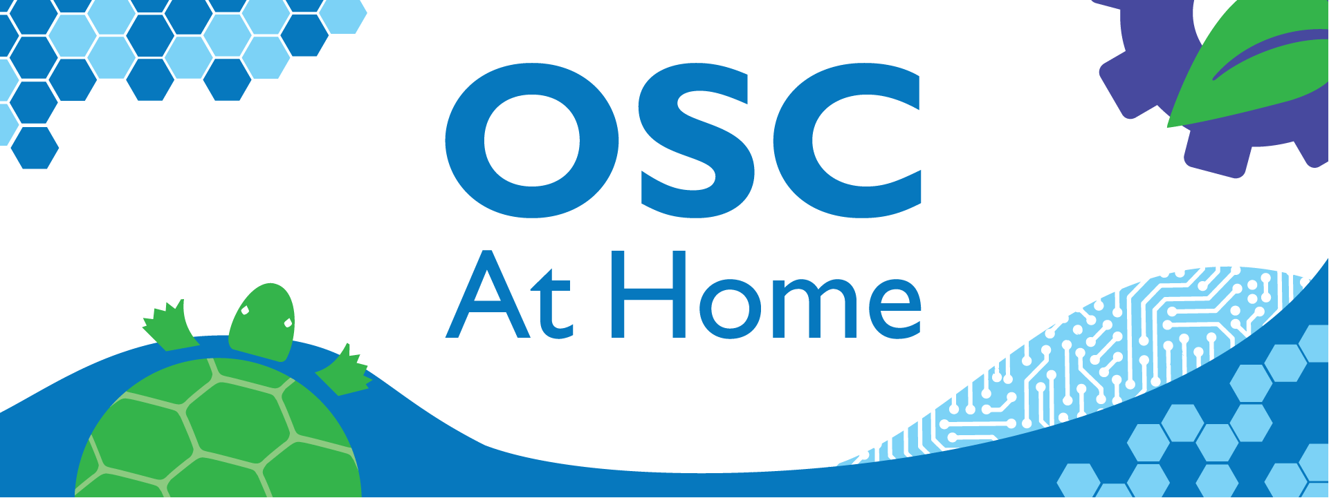 OSC At Home - illustration of turtle and hexagons