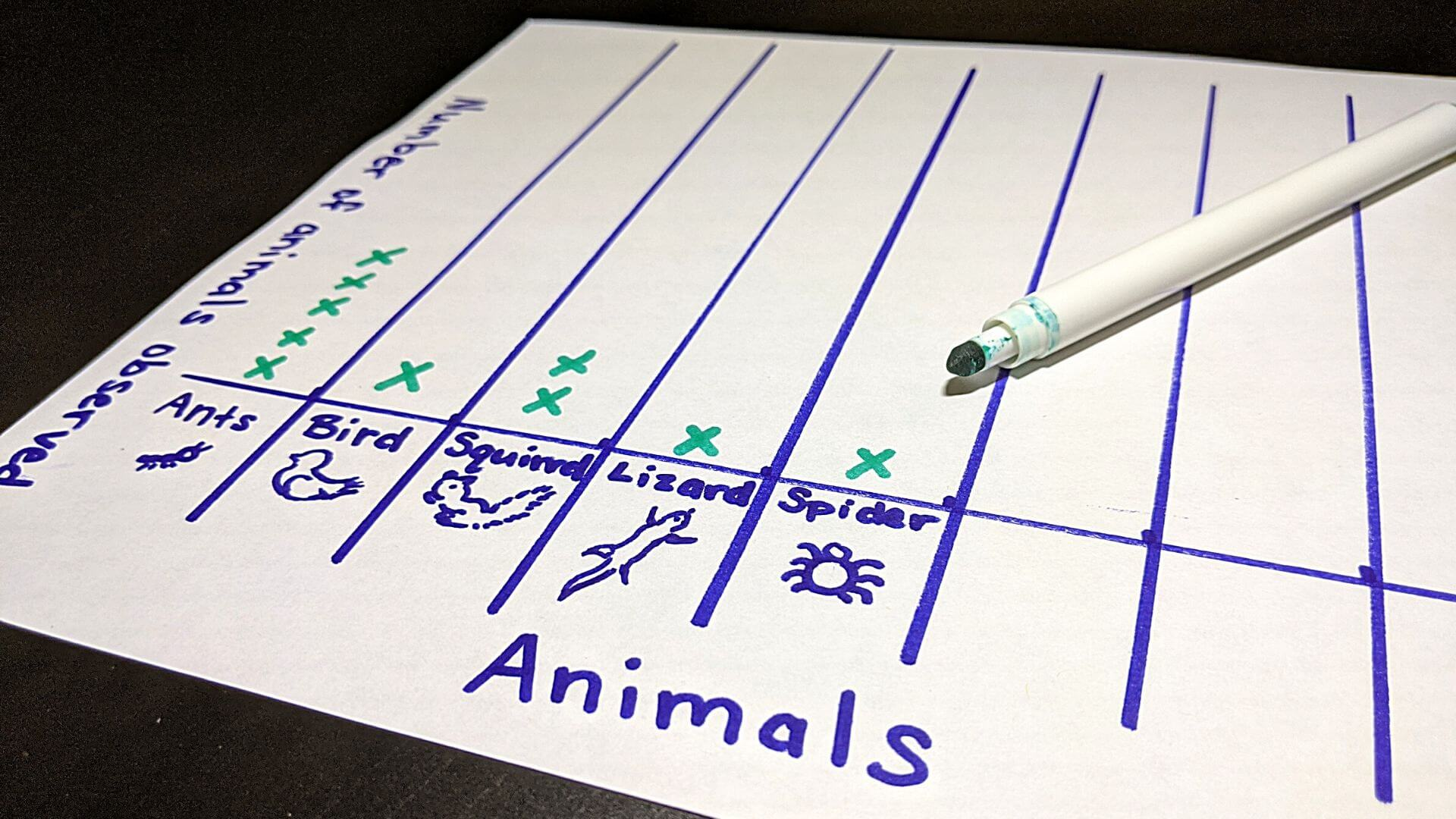 Observe your own backyard with this animal chart activity