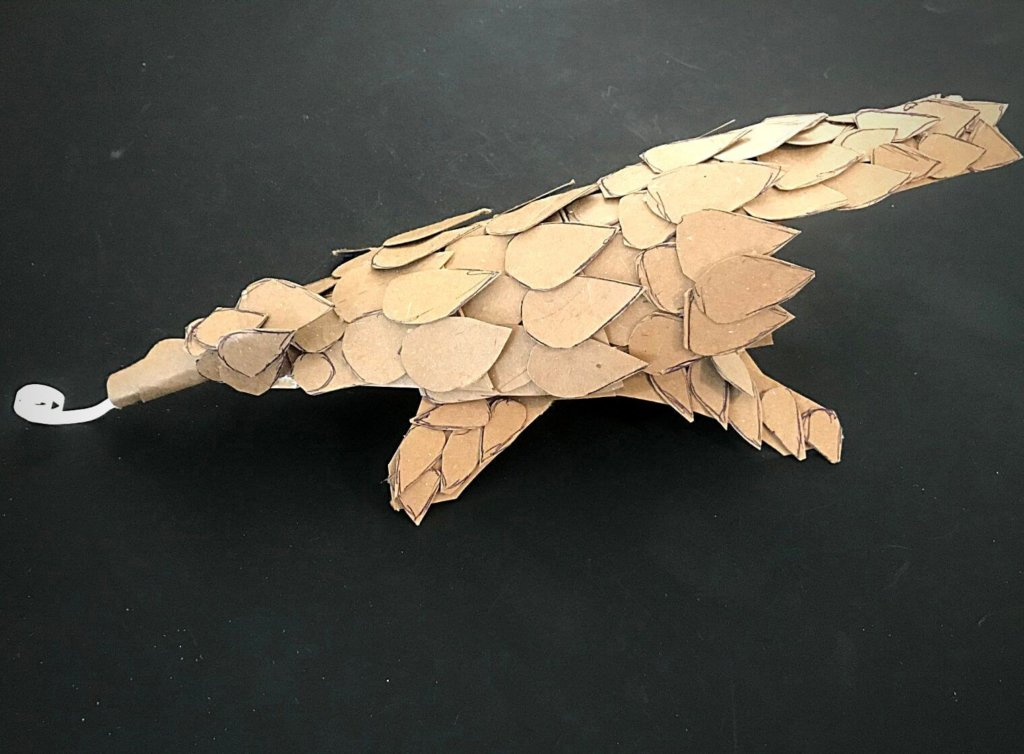 results of instructions for Cardboard Animals pangolin