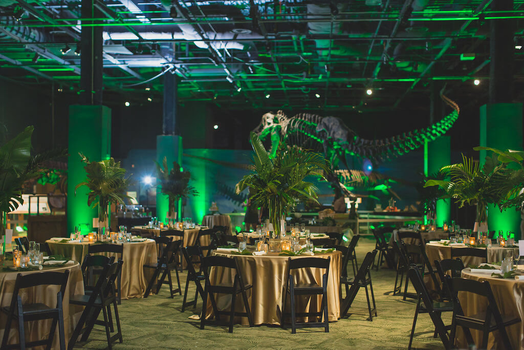 Dinosaur Wedding at Orlando Science Center