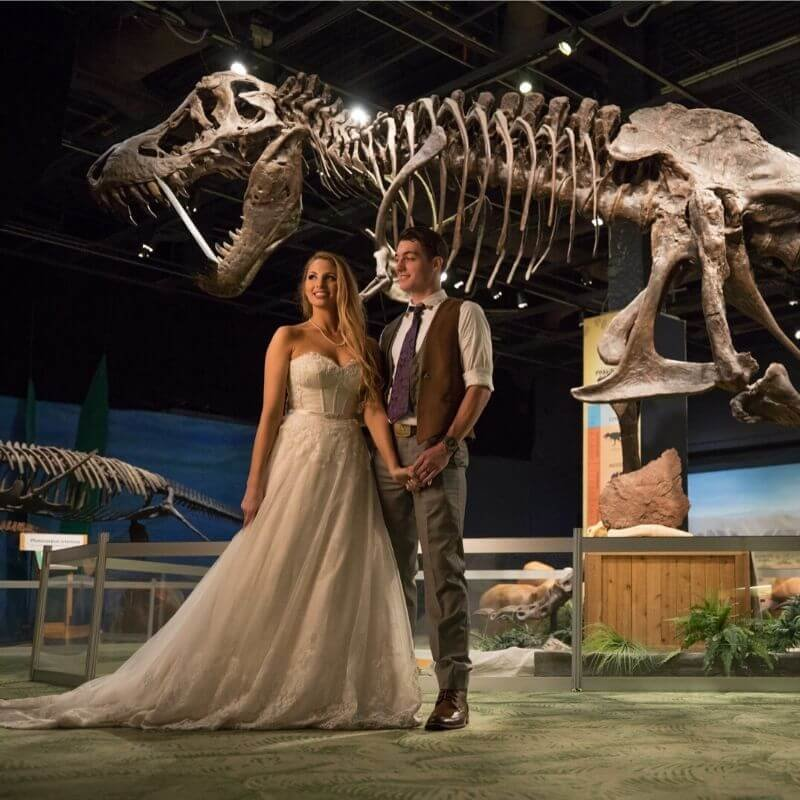 Best Wedding Portrait Backdrops in Orlando - dinosaur backdrop