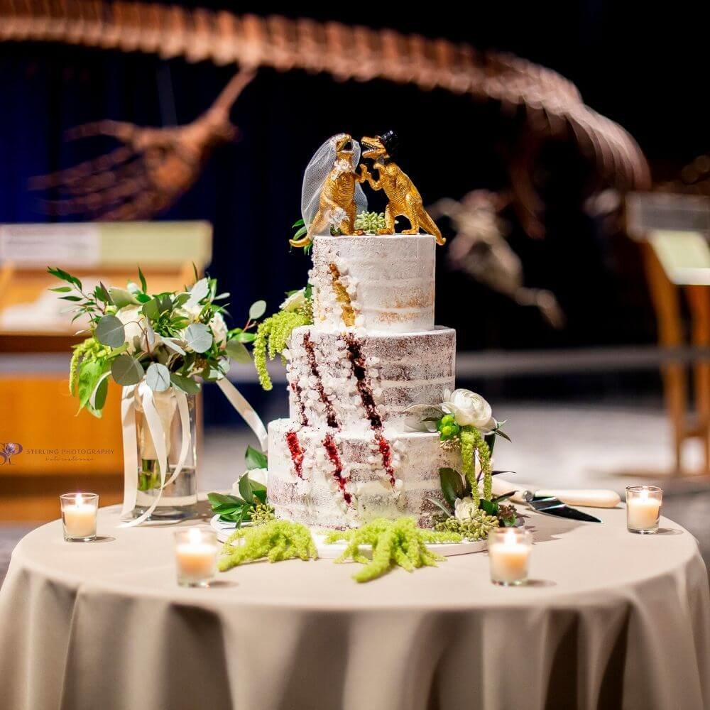 Dinosaur cake at dinosaur wedding
