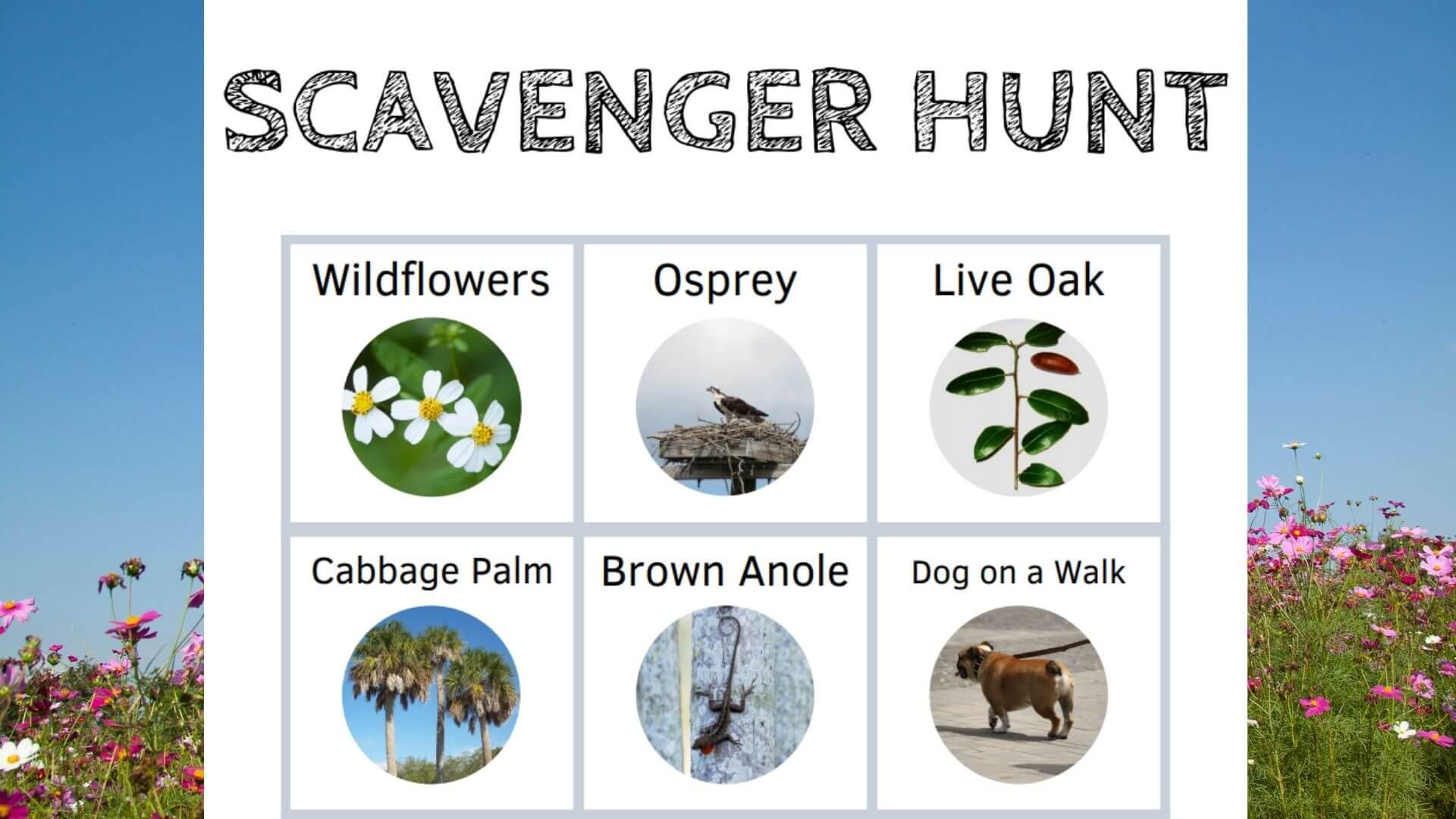 orlando science center outdoor scavenger hunt