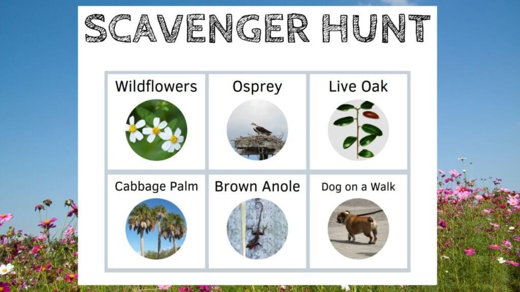 orlando science center outdoor scavenger hunt (2)