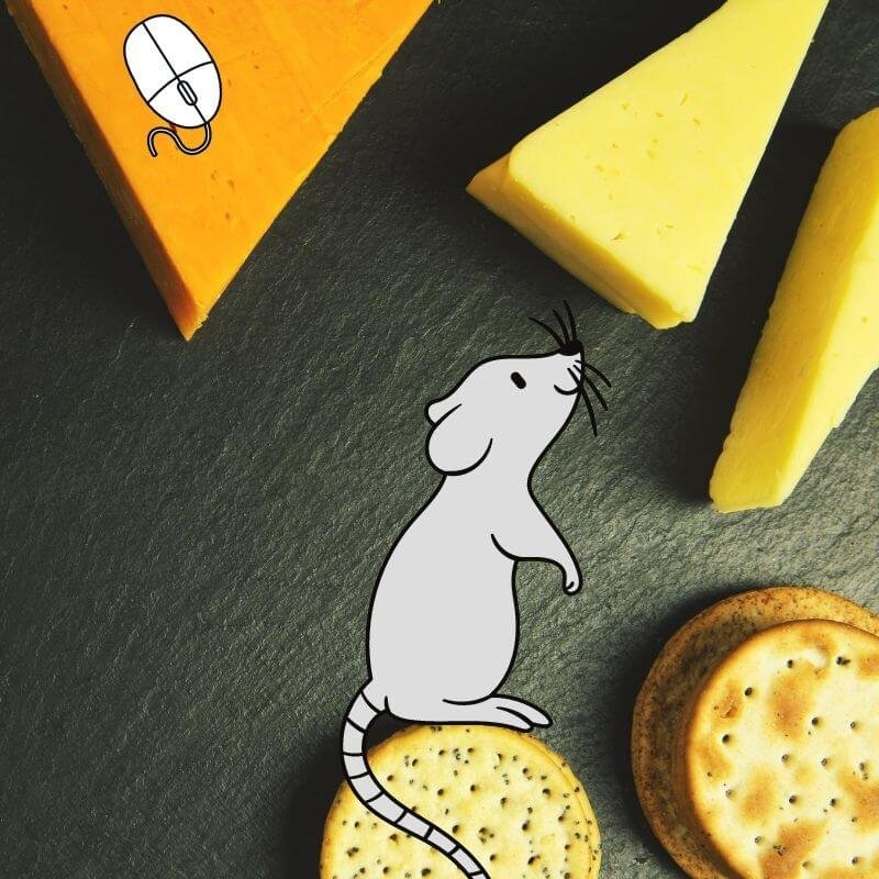popular science myths mice love cheese