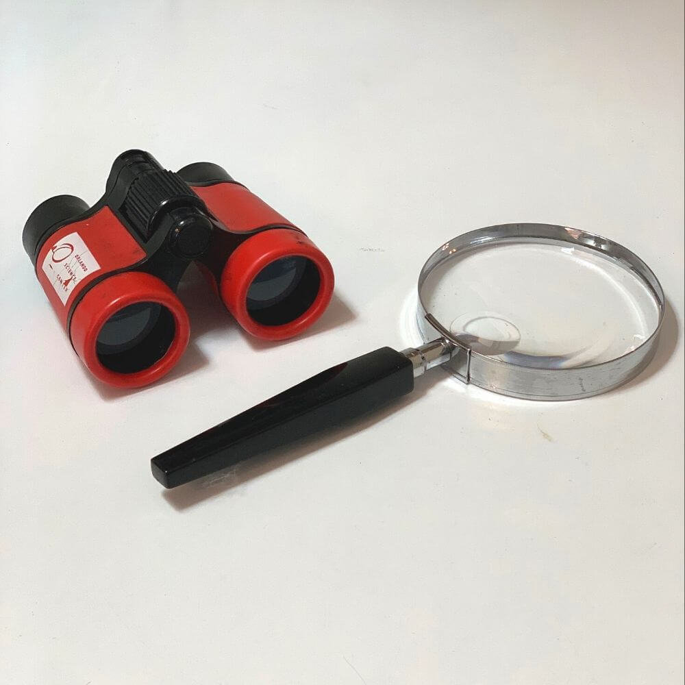 You tools like binoculars or magnifying glass to help complete your animal chart activity