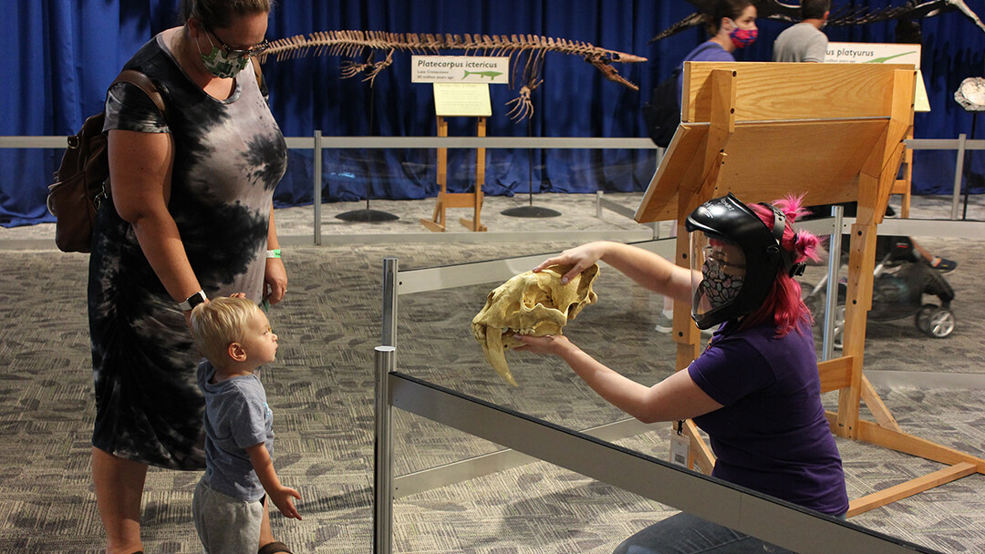 An OSC Science Program Interpreter shows a young child and caregiver a fossil replica during a Dino Discovery.