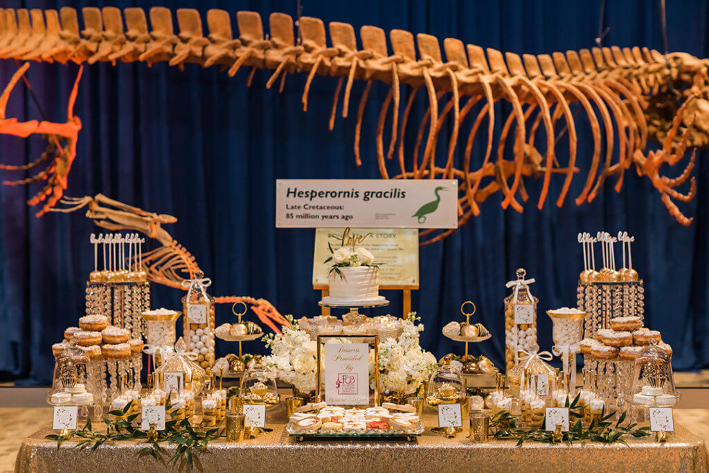 Beautiful dessert table setup in Our Planet exhibit featuring dinosaur behind the table.