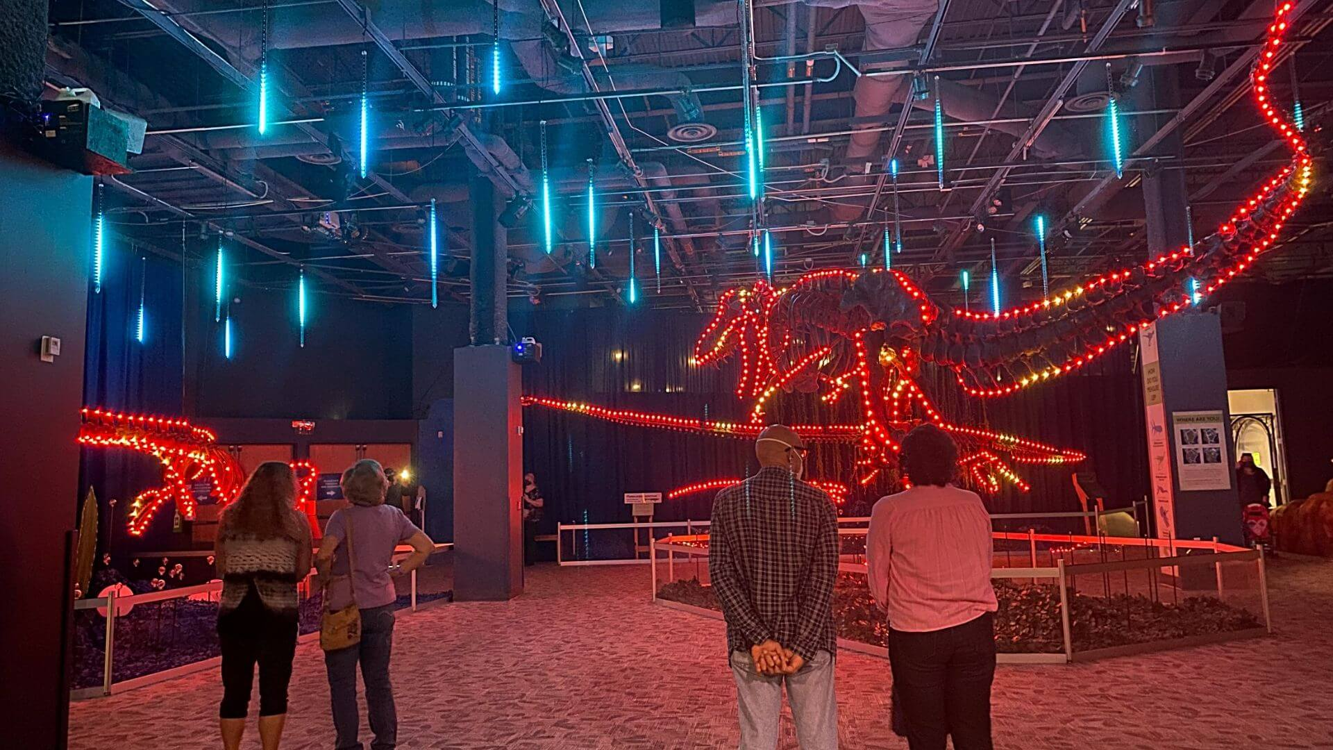 People watching Dinos in Lights