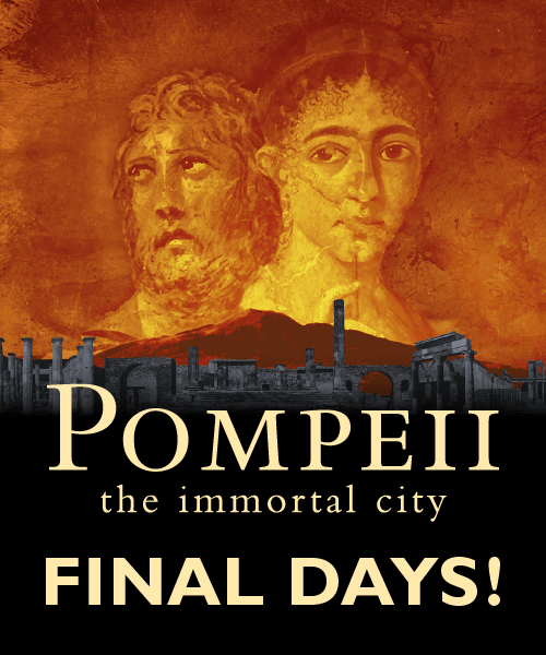 Pompeii: the Immortal City Exhibit - Finals Days Through January 24