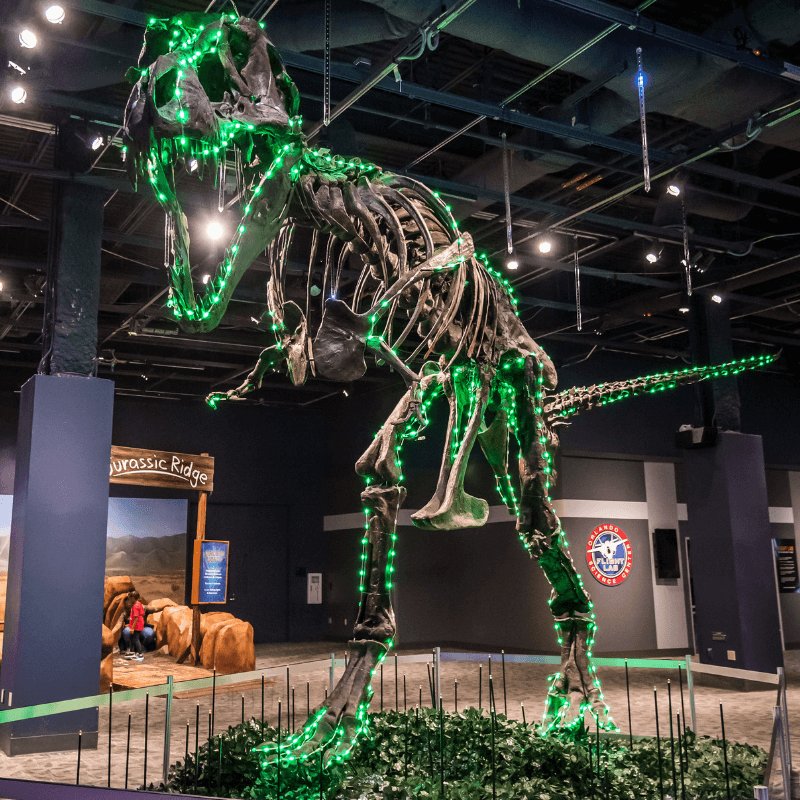 T rex covered in green lights