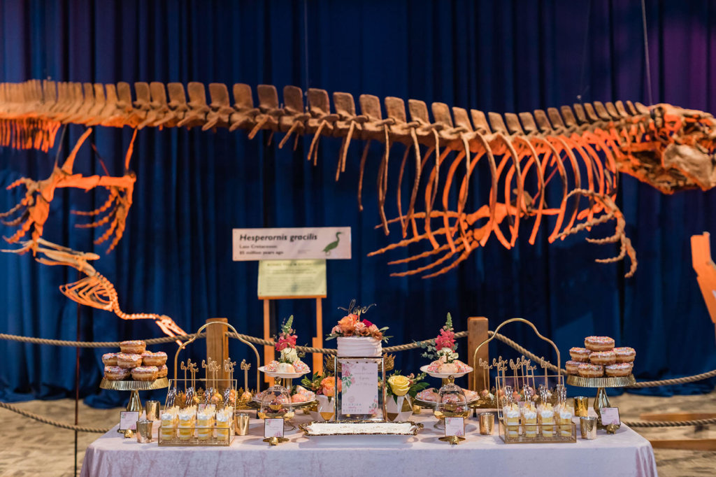 a table of food and decor in front of dinosaur fossils