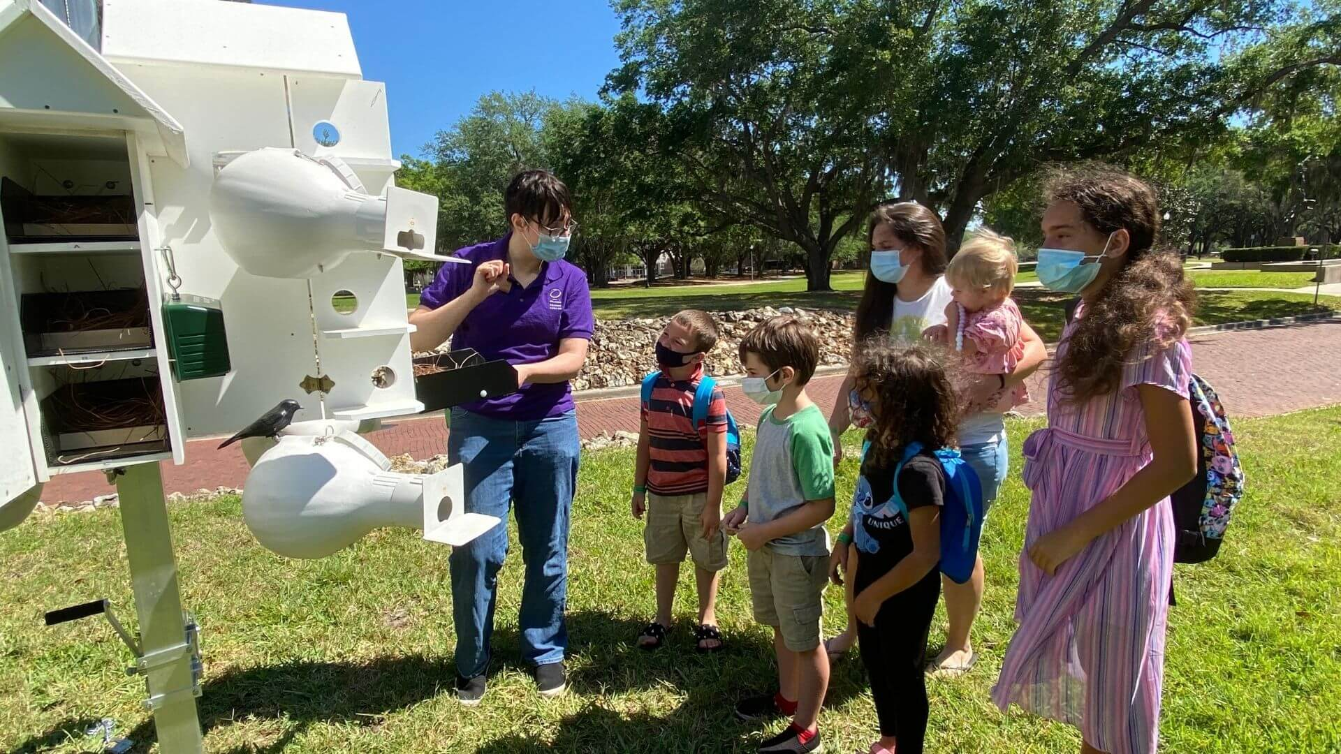 Can purple martin birds build their own nests at Orlando Science Center
