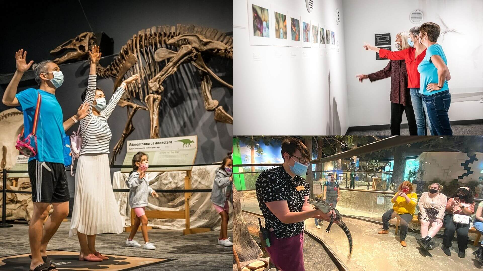 a collage of adults enjoying Orlando Science Center: A man and woman interacting with and AI screen. three women looking at an art gallery and three young adults learning about alligators