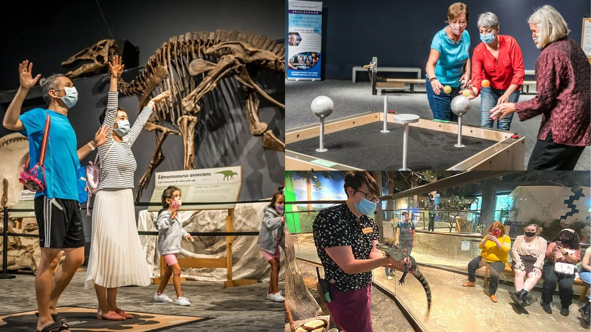 a collage of adults enjoying Orlando Science Center: A man and woman interacting with and AI screen. three women doing a physics experiment and three young adults learning about alligators