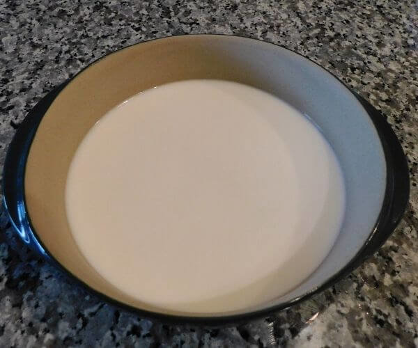 A dish of milk for tie dye milk experiment