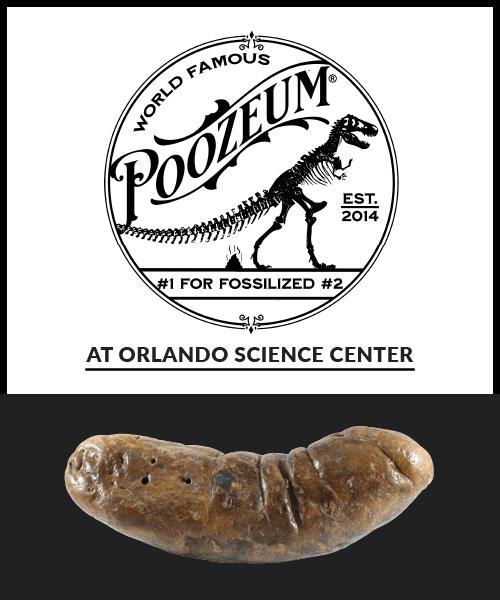 Poozeum at Orlando Science Center