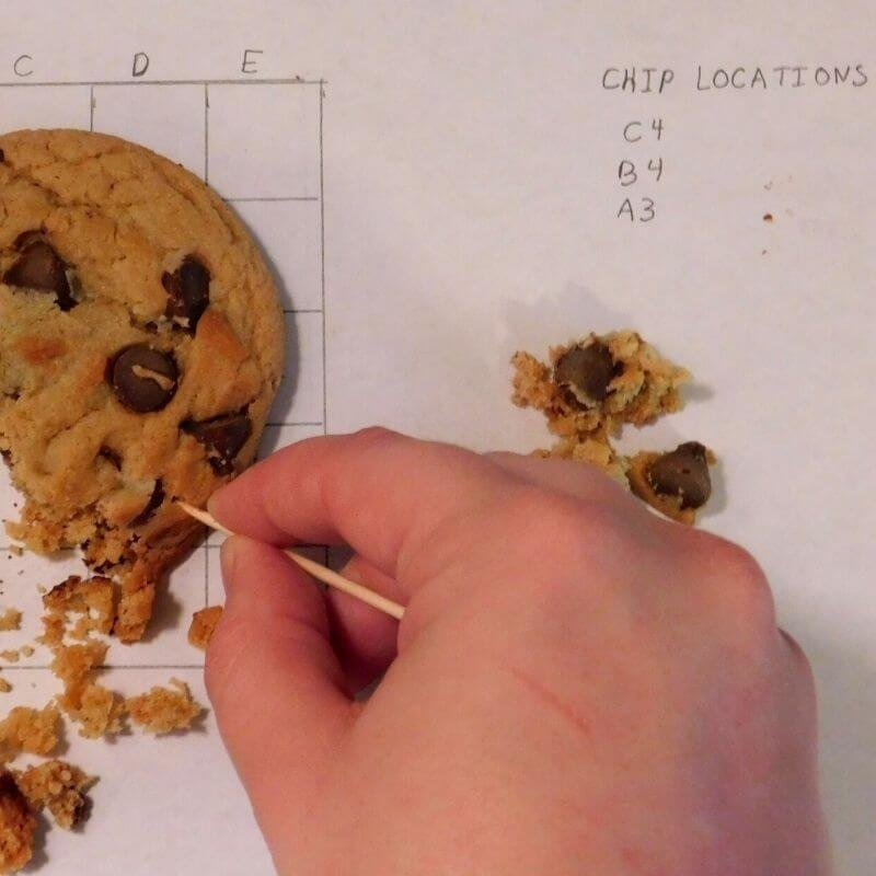 recording your archaeology cookie