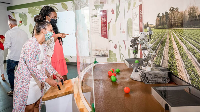 Guests controlling robotic arm to pick strawberries in Food Heroes exhibit